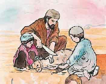 Makna dan Hikmah berQurban di Idul Adha