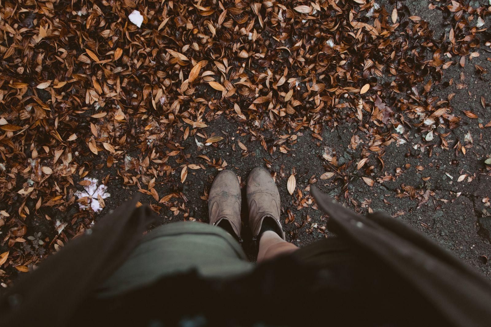 Ano Novo e a viagem de última hora folhas secas