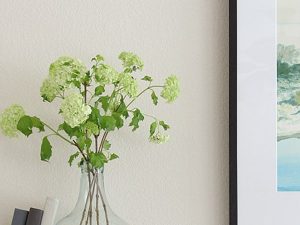 Decorating with Greenery and How to Make a Lamb's Ear Topiary