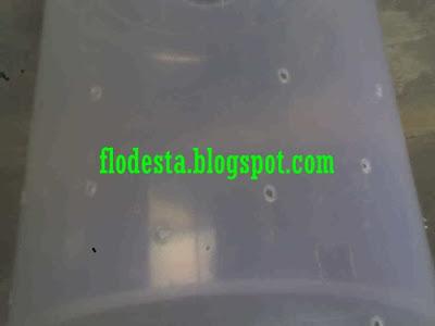 Gambar  Lubang Sarang Semut di Toples