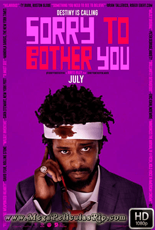 Sorry To Bother You 1080p Latino