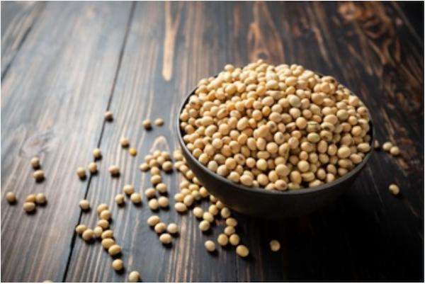 Redewendung spill the beans