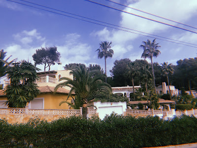 palm trees and yellow buildings under a blue sky
