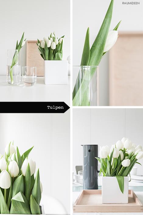 Dekoidee mit weißen Tulpen