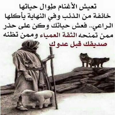 اروع امثال وحكم