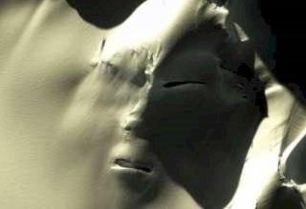 Se encontró un rostro gigante en la Antártida Real o Fake Mira 1