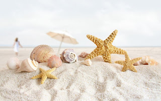 صور بحر و شواطئ