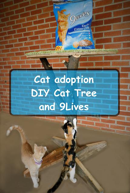 Cat-adoption-diy-cat-tree-9Lives #CelebratingMorris #CollectiveBias