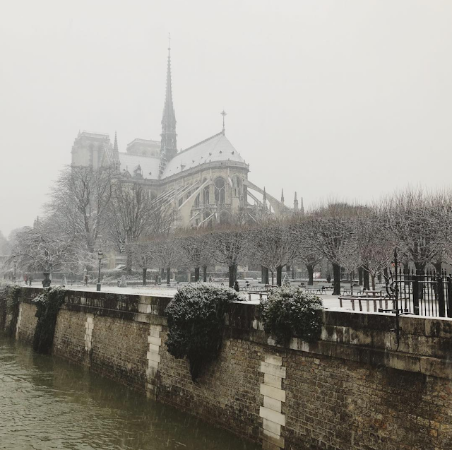 Notre Dame in snow, neige à Paris, Galia Alena