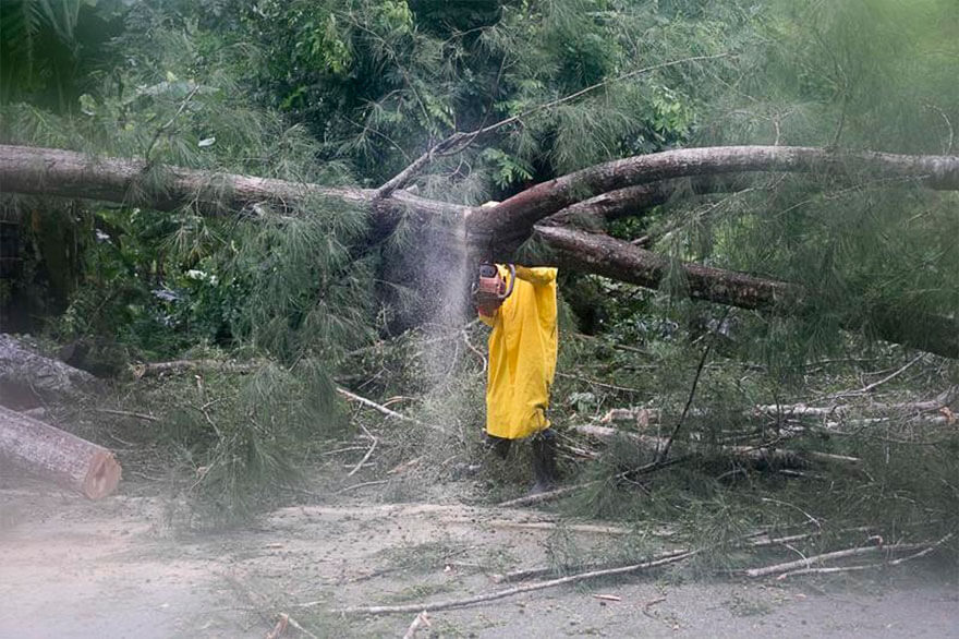 30 Shocking Pictures That Show How Catastrophic Hurricane Irma Is - An Employee From An Electrical Company Works To Remove A Tree Felled By Hurricane Irma, In Sanchez, Dominican Republic, On Thursday