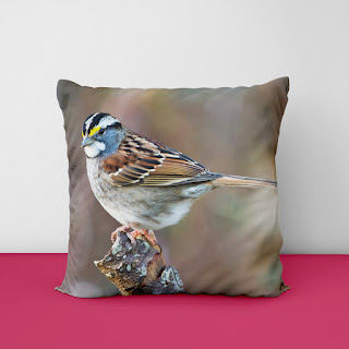 luxury cushion covers 2021