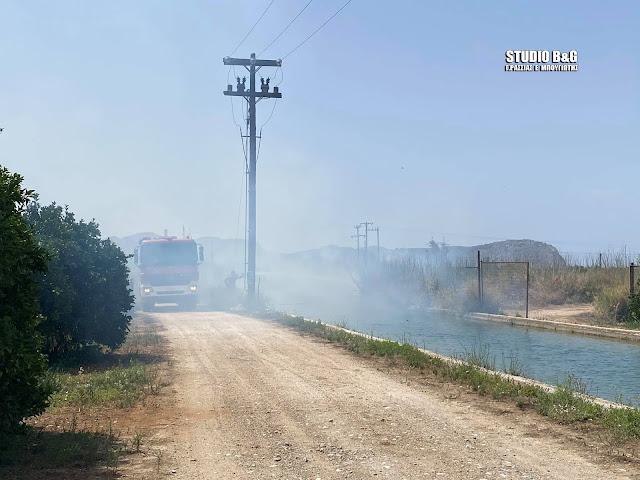 Φωτιά στην περιοχή της Νέας Τίρυνθας Αργολίδας
