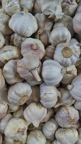 why garlic is good for you/ what are the advantages of garlic