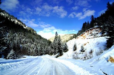 Çka është dimri ?, Qka eshte dimri, Kur fillon dimri, Kur mbaron dimri, Stinet e vitit, Fillimi i dimrit, data kur fillon dhe mbaron dimri,