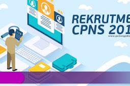 Dibuka 11 November, Berikut Informasi Pendaftaran CPNS 2019