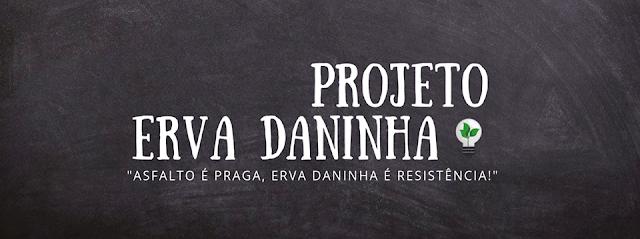 Cursos gratuitos sobre cinema, socialismo e mais em Campo Grande