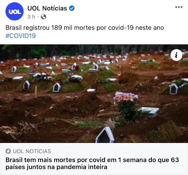 covid19 corona mortes verdade