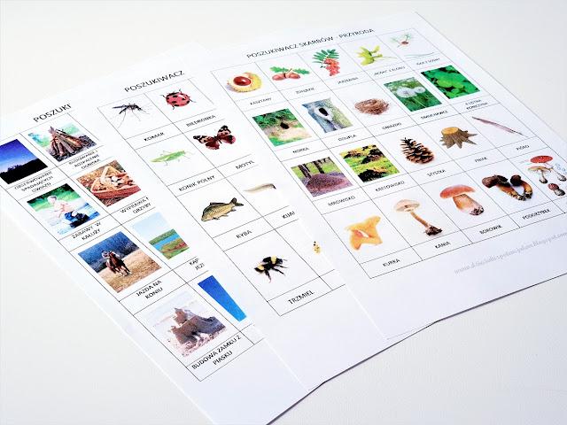 na zdjęciu widać trzy kartki formatu a4 z nadrukowanymi elementami przyrody takimi jak kaszta, mrowisko, motyl, ryba i wiele innych