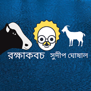 রক্ষাকবচ   //   সুদীপ ঘোষাল