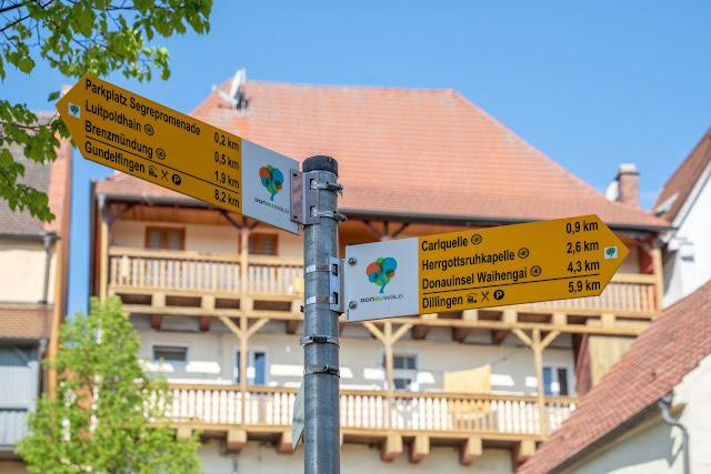 Premiumwanderweg DonAUwald | Etappe 3 von Gundelfingen nach Dillingen 19