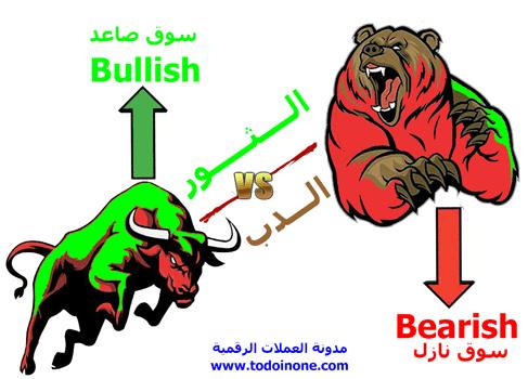 معنى الدببة Bears والثيران Bulls