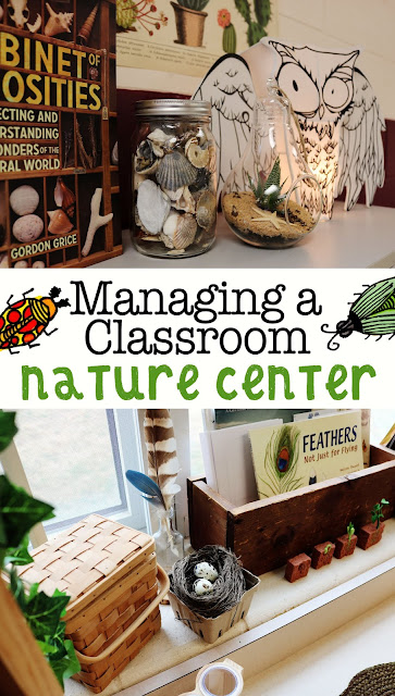 Classroom Nature Center