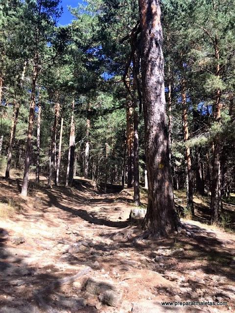 las mejores rutas de senderismo en Madrid