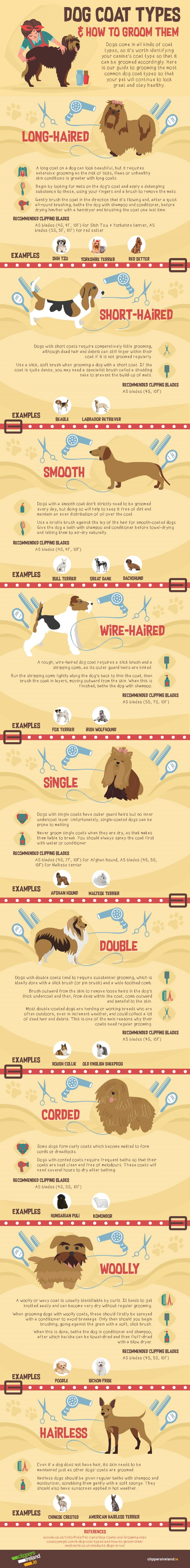 dog-coat-types-how-to-groom-them-infographic