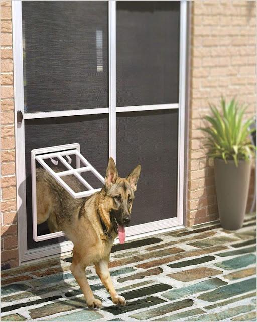 sliding screen door with dog door built in