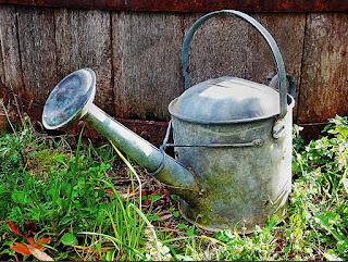 Hajaari (हजारी) - Watering Can