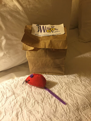 Hampton Inn Special Gift for Coco