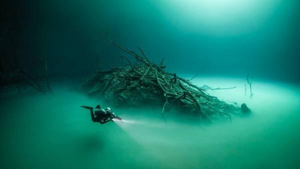 ضباب تحت الماء