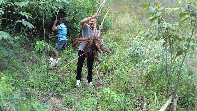 Parceria com Associação do Vale do Mundaú, garante fornecimento alimentar para 4 mil famílias em Delmiro Gouveia