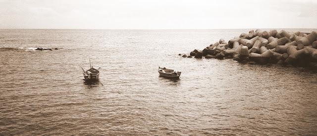 """Naszym przodkom wystarczały ryby słone i cuchnące albo o """"Dostatku"""" M. Crummeya"""