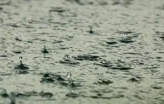 دعاء المطر وسماع الرعد والبرق