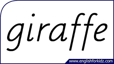 giraffe flashcard, single word