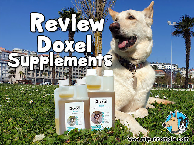 Doxel Supplements