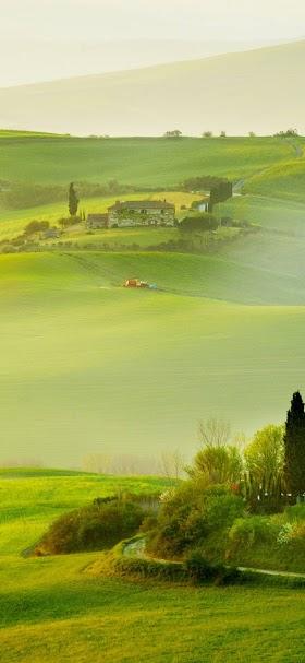 خلفية سهل المراعي الخضراء وقت الصباح الباكر