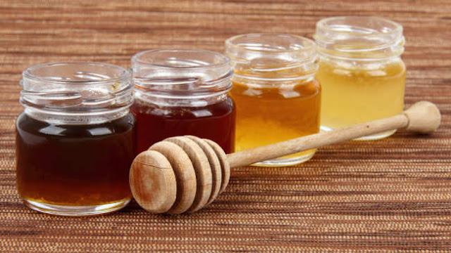 Berita kristen Mahasiswa Israel memenangkan penghargaan karena membuat madu tanpa lebah