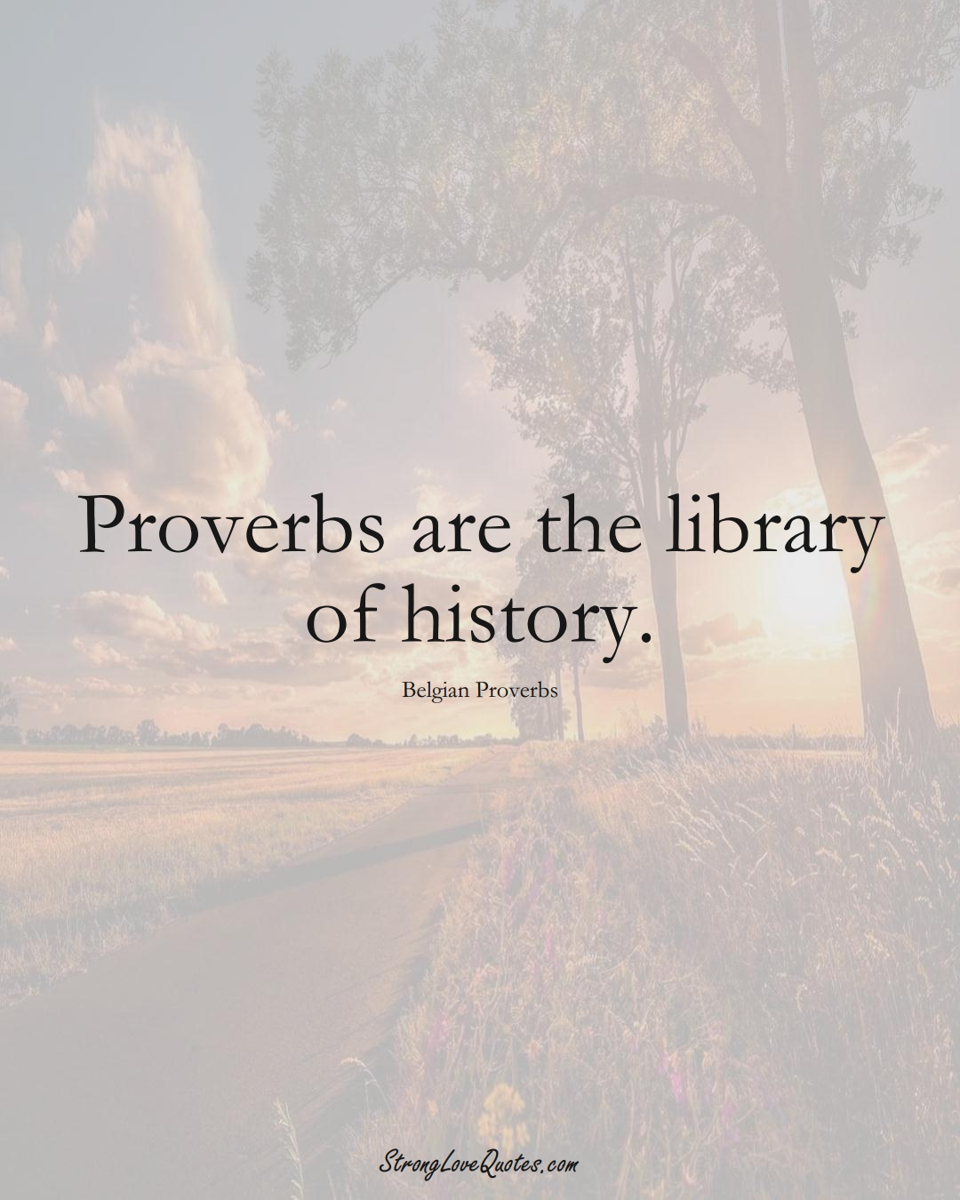 Proverbs are the library of history. (Belgian Sayings);  #EuropeanSayings