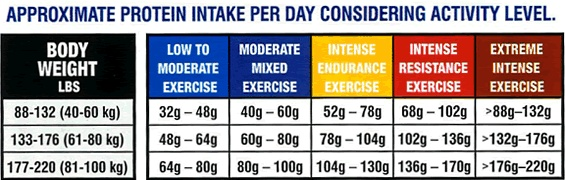 Daily protein requirement chart fit and slim indian