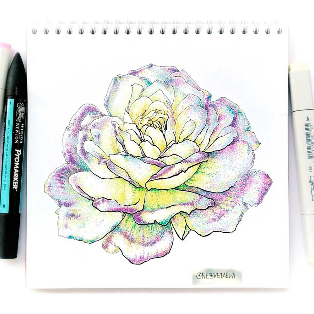markers sketch, copic, promarkers, sketchmarker, flower sketch, dotwork, Nezvetaeva, Sonia Nezvetaeva