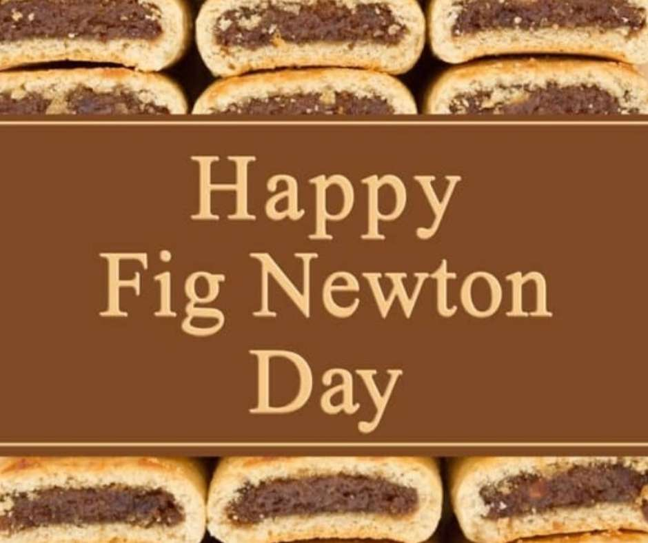 National Fig Newton Day Wishes Sweet Images