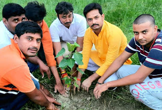 माँ फाउंडेशन ने मंदिर परिसर में किया पौधरोपण  | #NayaSaberaNetwork