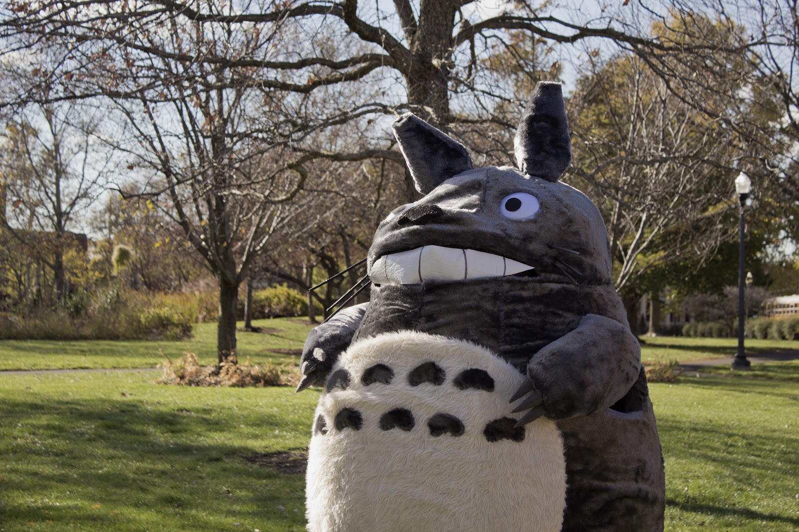 Also to be honest my mother did a lot of the work because she can sew and I cannot. ANND without further-a-do here is Totoro! & Melanie S. Mescher: Totoro Halloween Costume