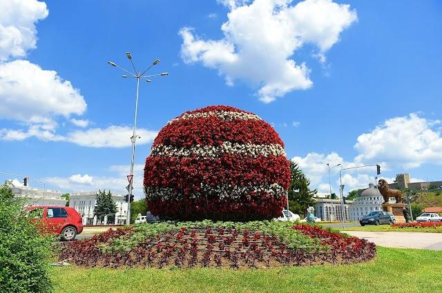 Bild des Tages - Skopje blüht in prächtige Farben