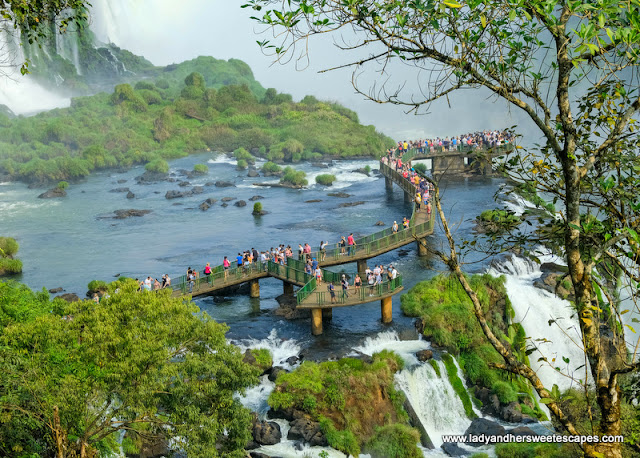 to the Devils Throat in Iguazu Falls