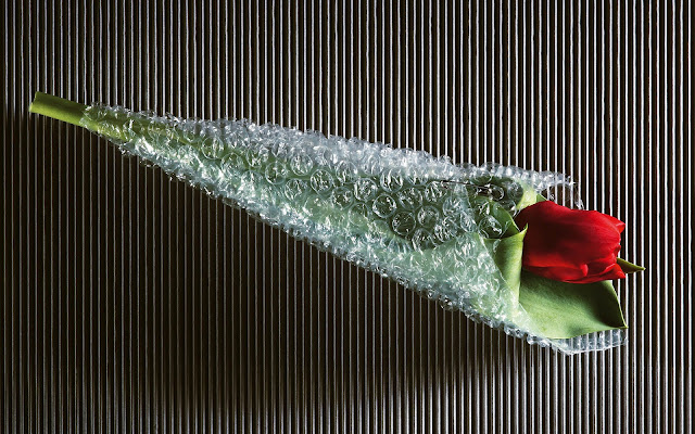Ingepakte rode roos