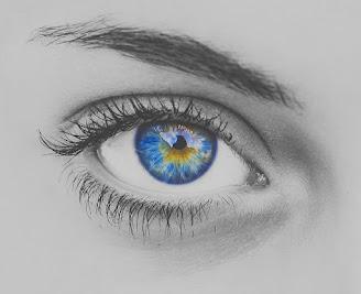 Auge Blau Wimpern Augapfel Sehvermögen Augenbrauen