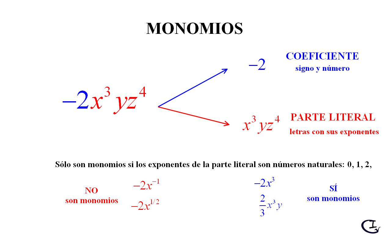 Resultado de imagen para Monomios